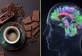 درباره ارتباط «قهوه و شکلات» با هوش انسان