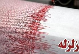 زلزله ۴ ریشتری بوشهر را لرزاند