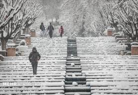 آماده باش شهرداری برای جلوگیری از یخ زدگی معابر شمال تهران