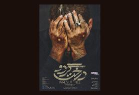 رونمایی از پوستر فیلم سینمایی «درخت گردو»