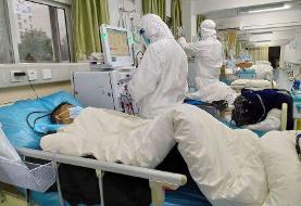 درمان ۴۰ درصد بیماران حاد تنفسی استان بوشهر رایگان شد