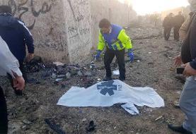 تعداد پیکرهای شناسایی شده سقوط هواپیما به ۶۱ تن رسید+اسامی