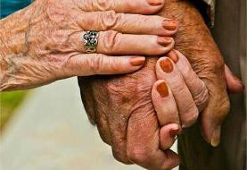 رواج عشق پیری در ایران! | چنددرصد ازدواجهای در سال گذشته متعلق به پیرمردان بوده است؟ | آمار ...