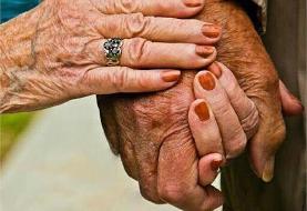 عشق پیری سهم ۸ درصد از ازدواجهای سال را گذشته دارد