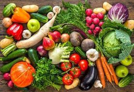 توصیههای تغذیهای وزارت بهداشت برای افزایش مقاومت بدن در فصل سرد سال