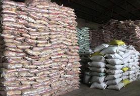 کشف ۲۴ تن برنج قاچاق در هرسین
