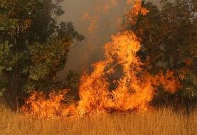 آتش سوزی ارتفاعات کوه پهن گچساران پس از چهار روز تلاش مهار شد/ قریب بر۱۵۰هکتاردر آتش سوخت.