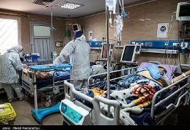 کار اجباری در بیمارستان، مجازات زنجانیهای بیتوجه به کرونا
