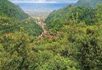 جنگل و دریا؛ مقصد گردشگری