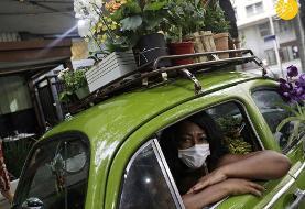 (تصاویر) گل فروش با فولکس قورباغهای