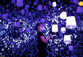 (تصاویر) موزه هنر دیجیتال توکیو