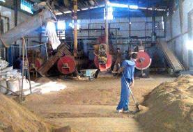 علت اصلی حادثه کارخانه پودر ماهی قشم اعلام شد