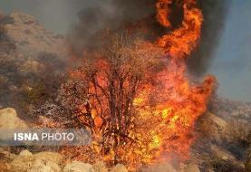 آتش سوزی جنگلها و مراتع منطقه حفاظت شده خامی فعلا مهار شد