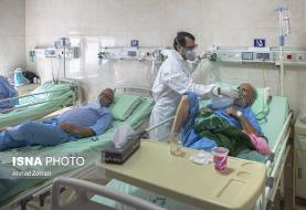 بستری ۳۱۴ بیمار در بخشهای کرونایی بیمارستانهای بوشهر/ ترخیص ۴۴ بیمار