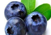 کاهش قند خون با یک میوه&#۸۲۰۴; خاص