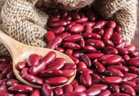 خرید بیواسطه حبوبات از کشاورز با اپلیکیشن ایرانی