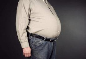 ۱۳ خوراکی موثر  در ایجاد چربی شکمی