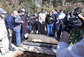 پیکر محمود فلاح تهیهکننده «مختارنامه» به خاک سپرده شد
