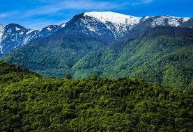 جنگلهای شمال امسال سند نمیگیرد | سازمان جنگلها گرفتن سند برای جنگلهای شمال را در دستور کار ...