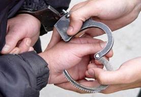 دستگیری سارقان پسته در کمتر از ۴۸ ساعت