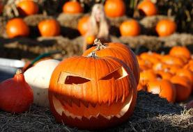 He was drunk and fighting with his girlfriend. Then out came the pumpkin, police say