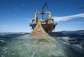 دست بسته محیط زیست برای نظارت  بر صید ترال/پیشنهاد اصلاح قانون بهرهبرداری از آبزیان