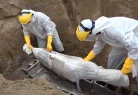 افزایش صددرصدی مرگومیر در پایتخت؛سه آرامستان جدید در تهران ساخته میشود