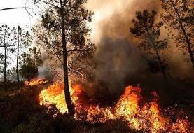 ۵۰ هکتار پهنه پارک ملی سالوک اسفراین در آتش سوخت
