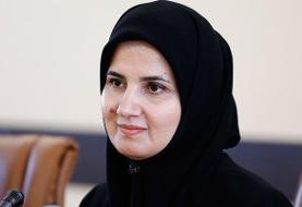 برای بازپسگیری مطالبات ایران از اروپاییها اقدامات قضایی کردیم