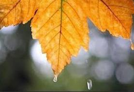 افزایش شدت بارشها در هفته آینده   دمای هوا کاهش مییابد