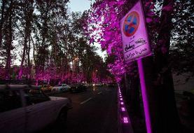 مهلت یک ماهه به طراحان ساماندهی نقطهای خیابان ولیعصر