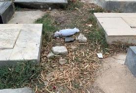 کشف جسد یک نوزاد در قبرستان گناوه بوشهر+عکس