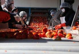نخستین اورژانس محصولات کشاورزی در سنندج راهاندازی شد