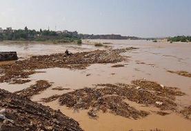 اثر جهانی بند میزان شوشتر زیر آب رفت