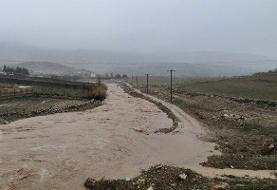 بسته شدن محور گناوه - برازجان در پی طغیان رودخانه