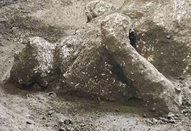 کشف بقایای تقریبا سالم دو مرد در پمپئی