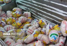 جزئیات توزیع مرغ تنظیم بازاری در تهران