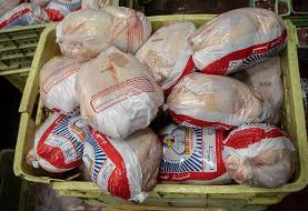 جدیدترین قیمت مرغ در بازار؛ ورود مرغ به تهران ۸ برابر شد