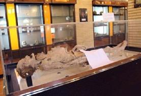 تصاویر   ماجرای عجیب مومیایی زن یزدی   جسد خوابیده در موزه کیست؟