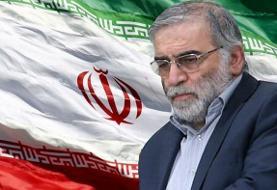 محسنفخریزاده، چهره محوری در برنامه هستهای ایران ترور شد