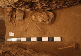 سرنوشت اسکلتهای باستانی تختجمشید؛ نامعلوم در پیچوخم اداری