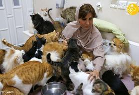 (تصاویر) زنی که ۵۰۰ گربه و سگ در خانه دارد!