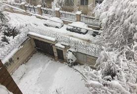هواشناسی: تهران برفی می شود