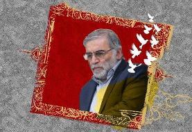 ببینید |  فوری؛ نخستین گزارش از محل ترور دانشمند ایرانی