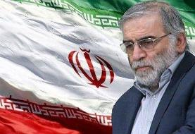 اقدامات جنایتکارانه خللی در استواری مردم ایران ایجاد نخواهد کرد