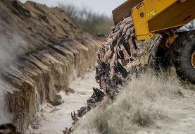 شکایت دانمارکیها از نحوه دفن لاشه صدها راسو