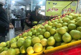 وضعیت فعالیت میادین میوه و ترهبار تهران در ۲۸ دی