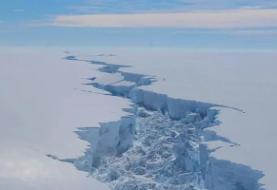 کرونا به قطب جنوب هم رسید