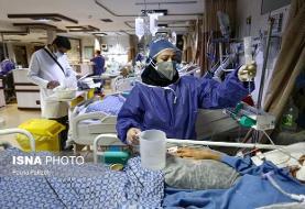 بستری ۱۱۷ بیمار در بخشهای کرونایی بیمارستانهای استان بوشهر