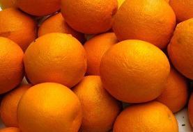 قیمت پرتقال در باغ، ۸ تا ۱۰ هزار تومان است/ صادرات کم شود، قیمت شکسته می شود